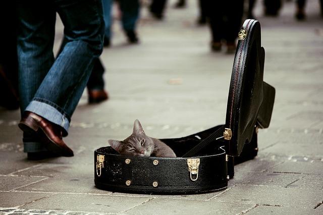 ギターケース おすすめ