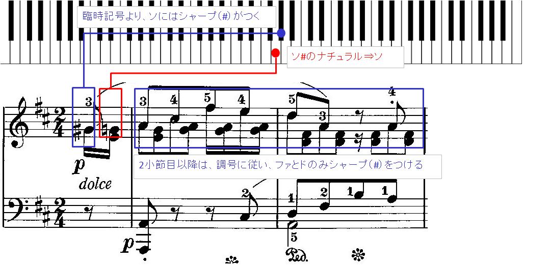 臨時記号のついた音に対し、ナチュラル(♮)がついた場合の図