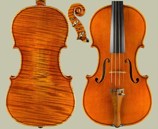 バイオリンのボディ