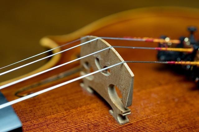 バイオリンの駒
