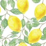 【ドラマ】米津玄師『Lemon』は大人気ドラマ「アンナチュラル」の主題歌だった!