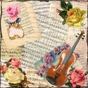 バイオリンのおすすめの名曲・有名曲10選をご紹介!【人気曲/協奏曲/ソロ】