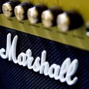 楽器のボディに使用される『パープルハート』とは?特徴をわかりやすくご紹介