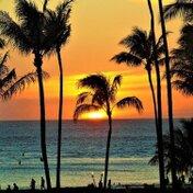 【6選】ハワイを感じたいときにおすすめのアーティストご紹介!